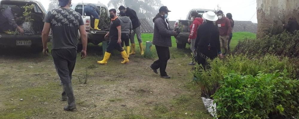 SE ESTARA REALIZANDO LA SIEMBRA DE PLANTAS EN SAN JOSE